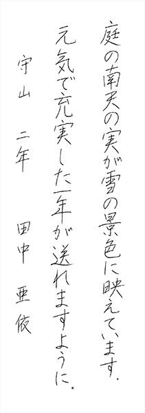 田中 亜依